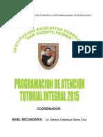 Programacion TUTORIA 2015(Coordinador)