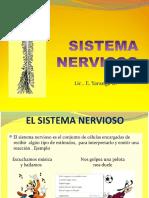 1. SISTEMA NERVIOSO INFORMACION.pptx