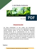 Gestión del Medio Ambiente 3.pptx