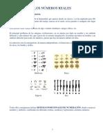 NOTAS 02 Números Reales.pdf