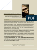 El Camino de IDA Al Homo Sapiens Sapiens II