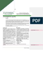 Informe 4- Cromatografia Corregidoo