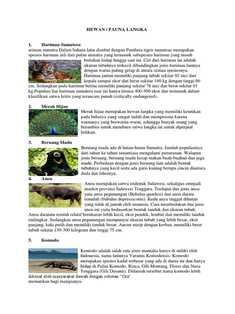 50 Gambar Hewan Dan Tumbuhan Yang Indah Terbaru