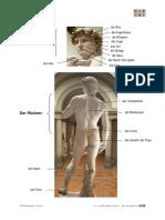 der_koerper_2.pdf