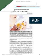 Terapia Floral Evolutiva