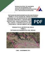 Microzonificacion Geotecnica Sismica y Evaluacion Del Riesgo en Zonas Ubicadas en El Distrito Del Cusco_TomoII