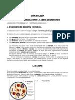GUÍA BIOLOGÍA 3°DIF SISTEMA CIRCULATORIO