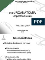 Aula 1 - Neuroanatomia
