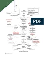 2. PATOFISIOLOGI TB MDR.docx