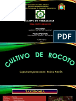 rocoto.pptx