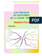 fis- 2017.pdf