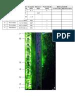 tintas fluorescentes_UTA