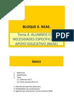 T4.NEAE2