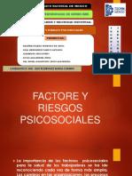 higiene y seguridad industrial Factore y Riesgos Psicosociales Ing Carmen Ruiz