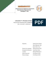 Informe Consolidacion Undimensional Con Mi Parte Metida