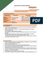 Modelo de Sesión de Aprendizaje Capacitacion