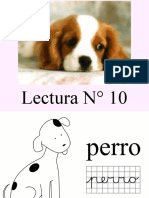 Lectura N° 10.pptx