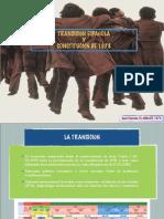 Transicion Constitucion