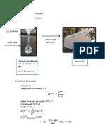 ACTIVIDAD OPTICA DE LA SACAROSA.docx