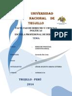 Derecho Porocesal Constitucional Ciclo 9