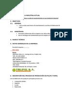 314415036-modelo-de-informe-pdf.pdf