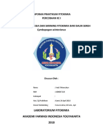 VT7-Laporan Praktikum Fitokimia I Pembuatan Simplisia + skrining fitokimia
