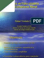 Preparo doTrato Urinário Pré-Transplante Renal