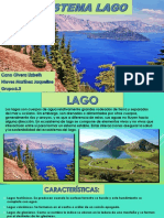 Ecosistema Lago