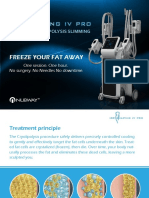 Brochure+of+ICE+SHAPING+IV+PRO
