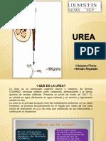 exposicion-urea-QFB-gladys.pptx