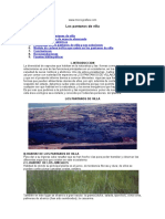 99602235-Pantanos-de-Villa.doc