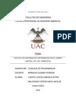 sistemas de informacion en ing ambiental.docx