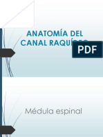 CANAL RAQUIDEO.ppt