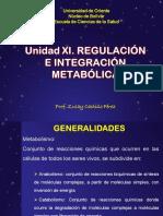 Unidadxi Regulacineintegracinmetablica 130407134218 Phpapp02