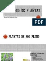 Catálogo de Plantas - paisagismo 1