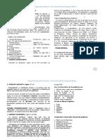 325379398-EVOLUCION-Y-PERIODOS-DE-LA-MUSICA-2do-pdf.pdf