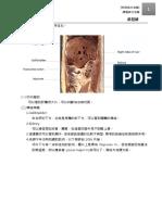 解剖LAB ppt51