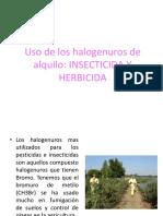 halogenurosale  plagas