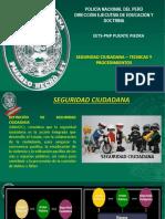 PPT SEGURIDAD CIUDADANA.pptx