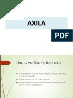 Clase 4 Axila.pdf