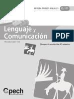 CL-111-prueba.pdf