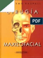 Cirugia Maxilofacial Patologia Quiruŕgica de La Cara Boca Cabeza y Cuello Escrito Por Guillermo Raspall
