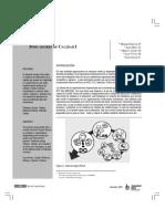 indicadores de calidad.pdf