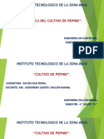 "Cultivo de Pepino urbano Ingeniería Agronomía 4 Semestre grupo ""B"" I.T.Z.M. 2018"