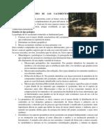 Métodos de Estudio de Los Yacimientos Minerales
