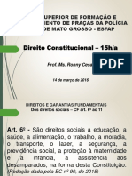Direito Constitucional Slides 14.03