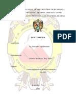 CÁRATULA - DIATOMITA.docx
