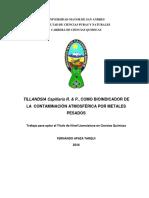 Documento Tillandsias Capillaris R y P