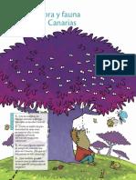 Flora de Canarias Pdf3