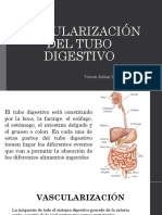 Vascularización Del Tubo Digestivo. Biologia